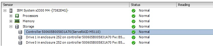 ibm megaraid storage manager manual