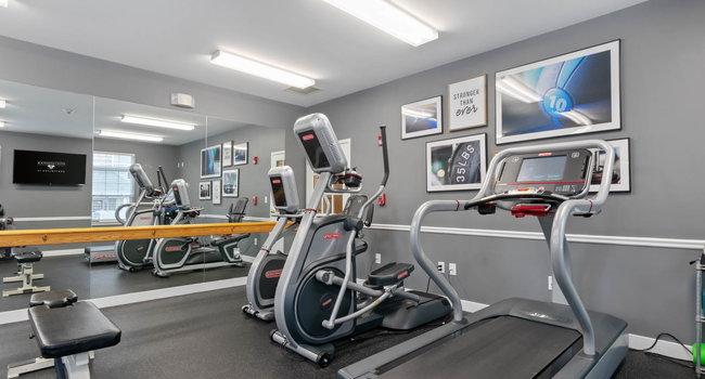 pioneer star treadmill g6445n manual